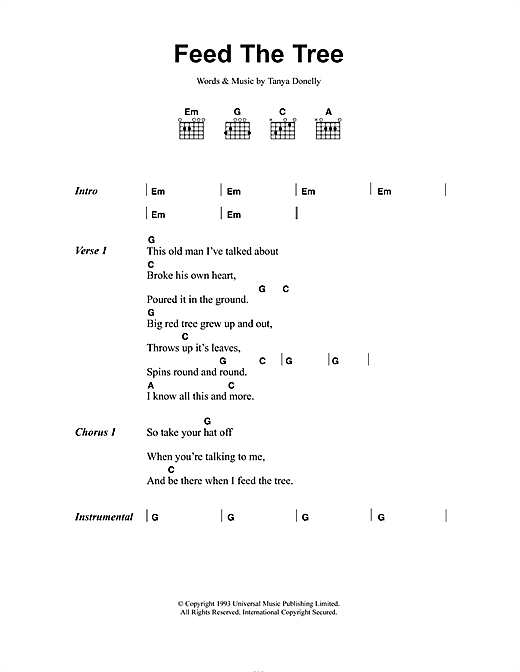 Download Belly 'Feed The Tree' Digital Sheet Music Notes & Chords and start playing in minutes