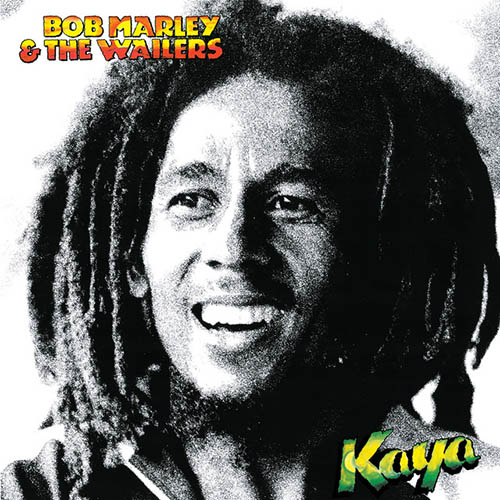 Bob Marley Easy Skanking profile picture