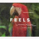 Download Calvin Harris Feels (feat. Pharrell Williams, Katy Perry & Big Sean) Sheet Music arranged for Beginner Ukulele - printable PDF music score including 2 page(s)