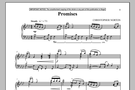 Christopher Norton Promises sheet music notes and chords