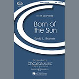 Download or print Born Of The Sun Sheet Music Notes by David Brunner for TBB