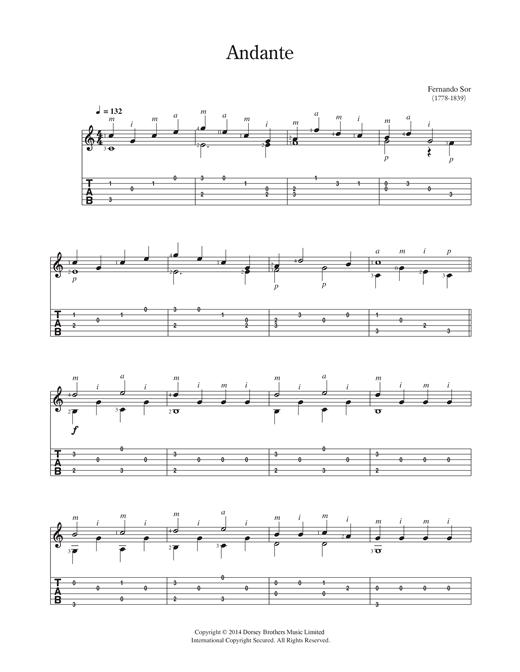 Fernando Sor Andante sheet music notes and chords