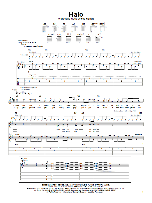 Foo Fighters Halo sheet music notes and chords