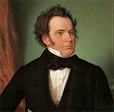 Download or print Ave Maria Sheet Music Notes by Franz Schubert for Piano