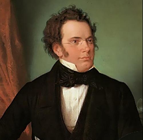 Franz Schubert Symphony No. 5 profile picture