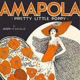 Download Joseph M. Lacalle Amapola (Pretty Little Poppy) Sheet Music arranged for Accordion - printable PDF music score including 3 page(s)