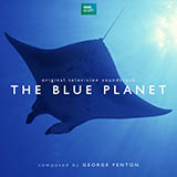 Download or print The Blue Planet, Blue Whale Sheet Music Notes by George Fenton for Piano