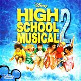 Download or print Humu Humu Nuku Nuku Apuaa Sheet Music Notes by High School Musical 2 for Piano