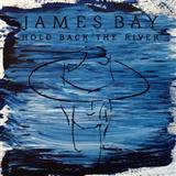 Download or print Hold Back The River Sheet Music Notes by James Bay for Ukulele Lyrics & Chords