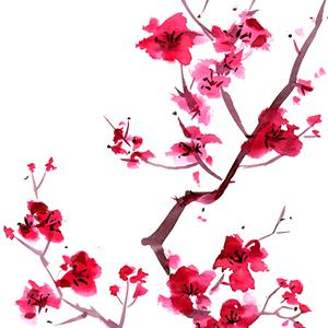 Japanese Folksong Sakura (Cherry Blossoms) profile picture