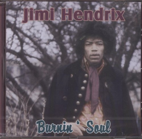 Jimi Hendrix Long Hot Summer Night profile picture