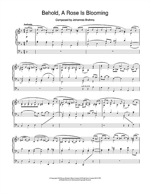Johannes Brahms Behold, A Rose Is Blooming sheet music notes and chords