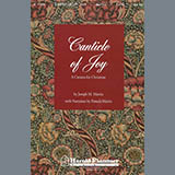 Download or print Canticle Of Joy - Violin 1 Sheet Music Notes by Joseph M. Martin for Choir Instrumental Pak