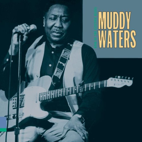 Muddy Waters Baby Please Don't Go profile picture