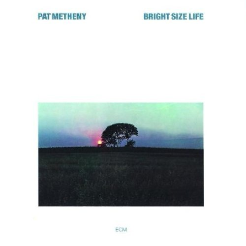 Pat Metheny Bright Size Life profile picture