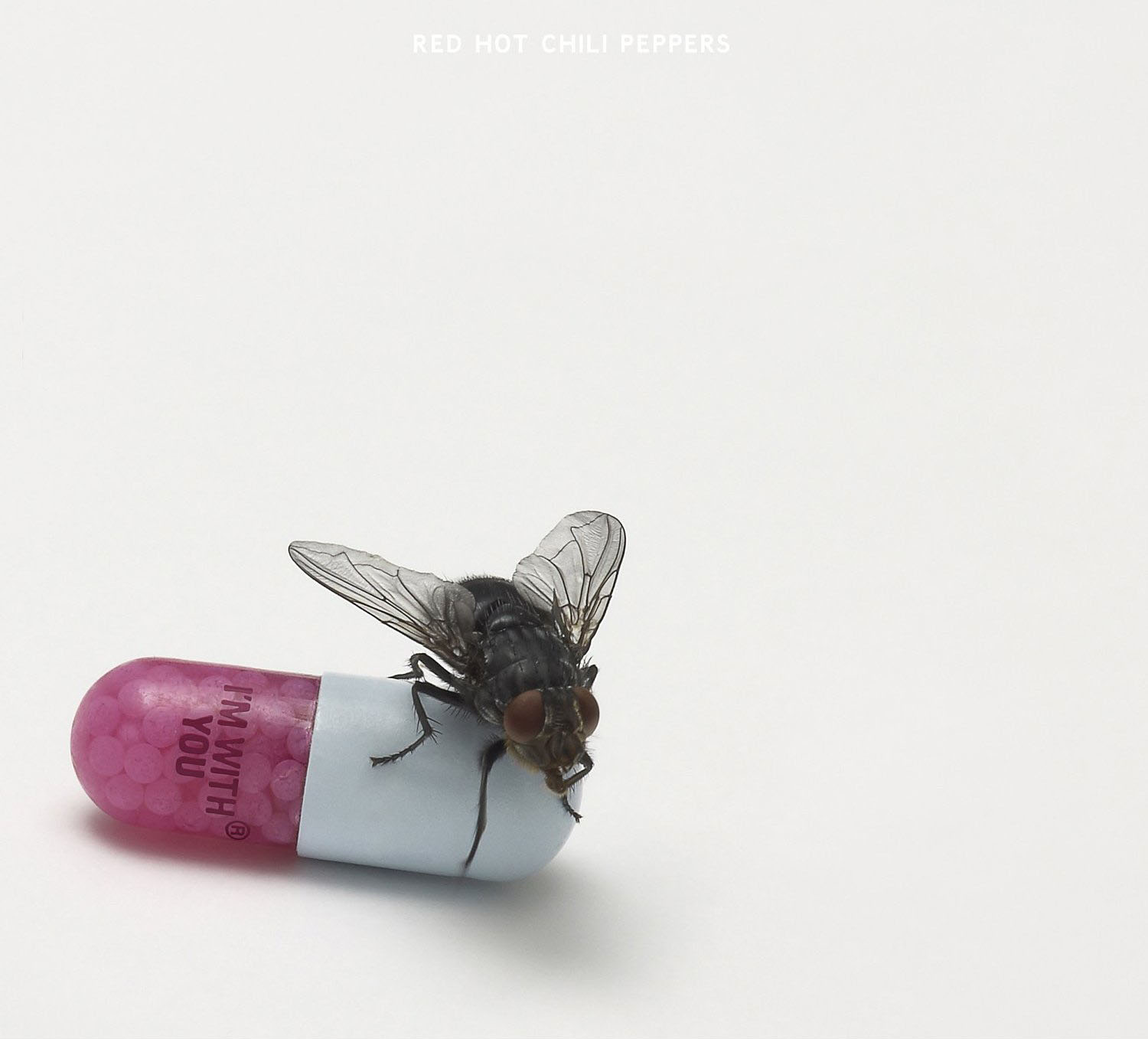 Red Hot Chili Peppers Goodbye Hooray profile picture