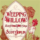 Download or print Weeping Willow Rag Sheet Music Notes by Scott Joplin for Easy Piano