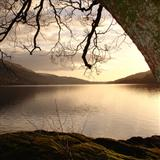 Download or print Loch Lomond Sheet Music Notes by Scottish Folksong for Piano