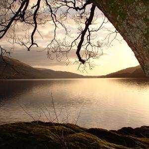 Scottish Folksong Loch Lomond profile picture