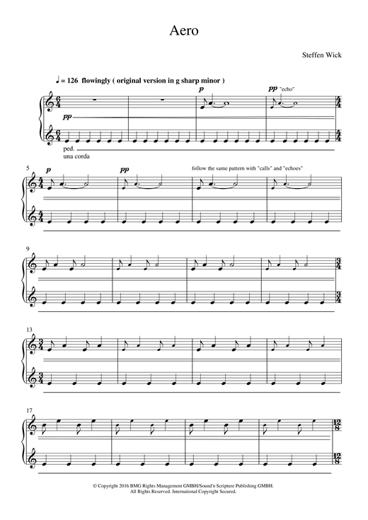 Steffen Wick Aero sheet music notes and chords