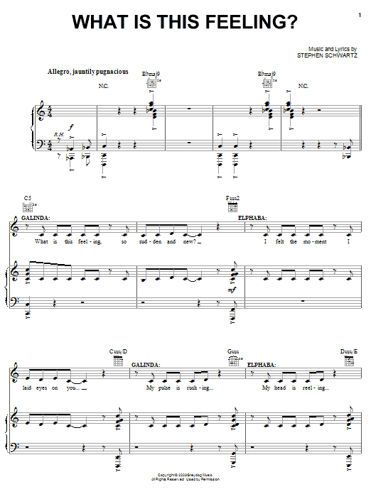 Stephen Schwartz What Is This Feeling? sheet music notes and chords