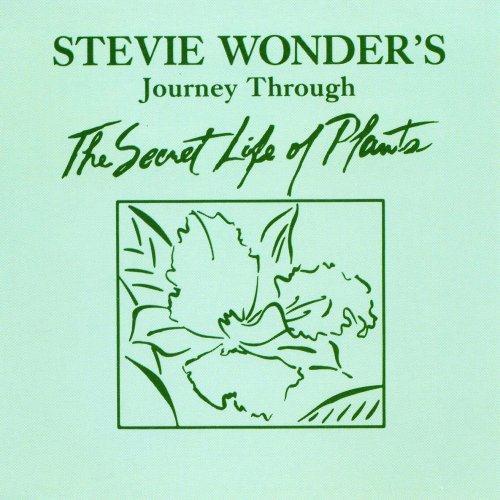 Stevie Wonder Power Flower profile picture