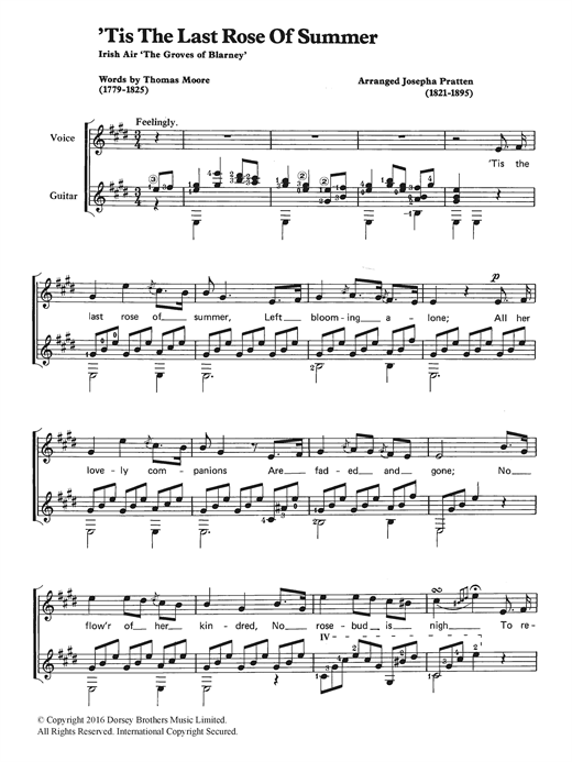 Download Traditional ''Tis The Last Rose Of Summer' Digital Sheet Music Notes & Chords and start playing in minutes
