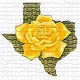 Download or print The Yellow Rose Of Texas Sheet Music Notes by Traditional for Piano
