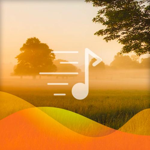 Traditional English Ballad Scarborough Fair profile picture