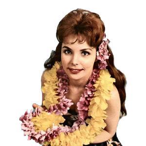 Traditional Hawaiian Folk Song Maori Farewell Song profile picture
