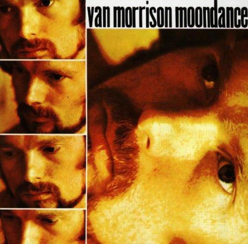 Van Morrison Moondance profile picture