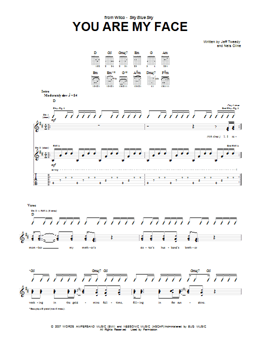 Wilco You Are My Face sheet music notes and chords